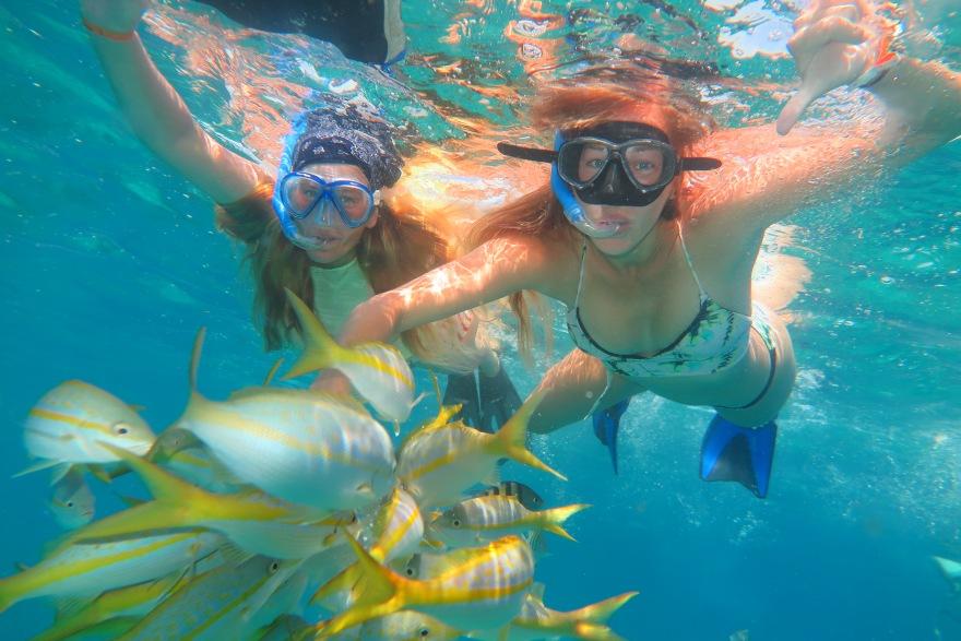 snorkelling1