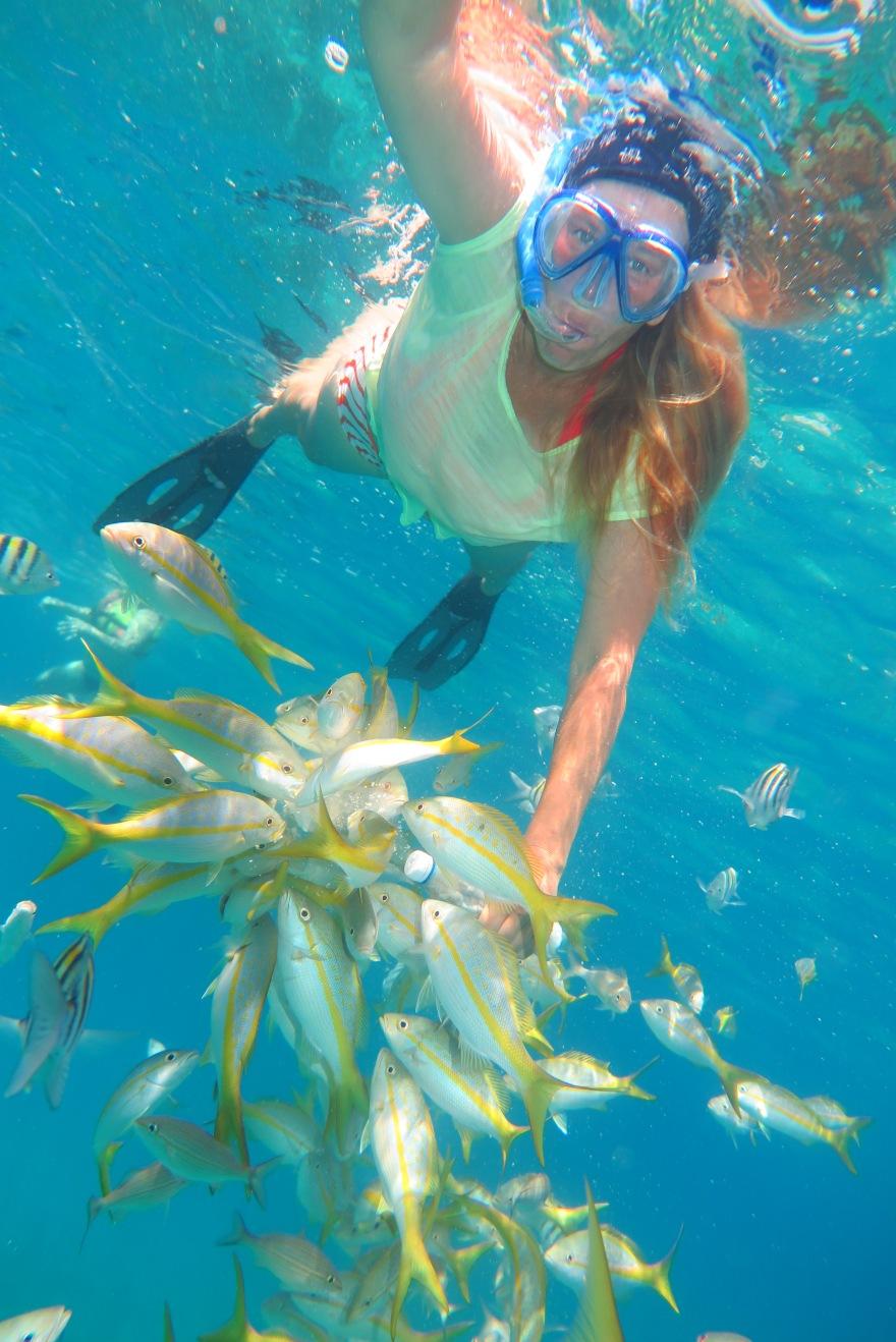snorkelling2